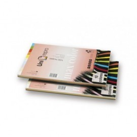 UNI-REPRO MAX COLOR Papel multifunción color 100h 80 g. A4 Surtido intenso y palidos 49292