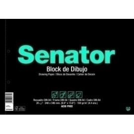 Bloc De Dibujo Senator Fº Prol. 20h
