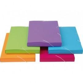 5* Carpeta de proyectos  lomo 30mm colores surtidos Polipropileno A4  42459798